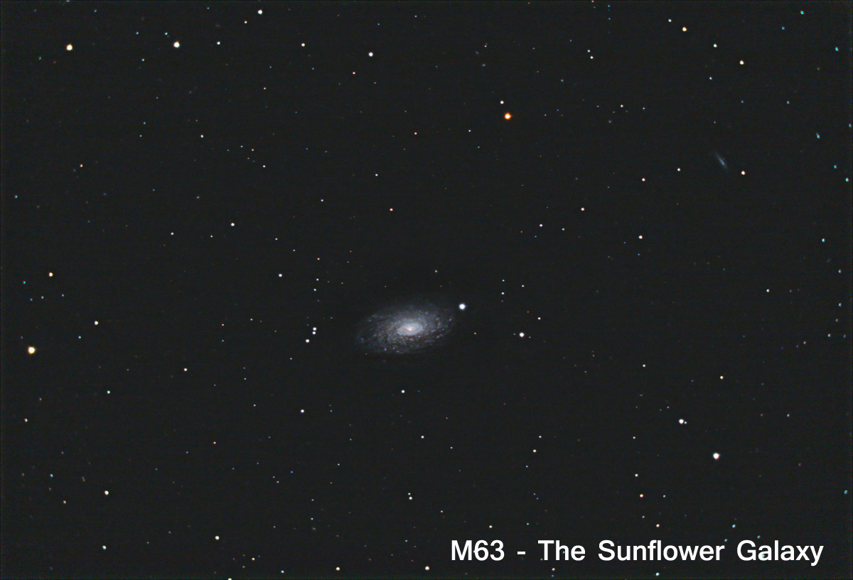 m63-labeled